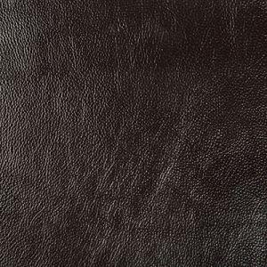 SECRETARIA-6 SECRETARIAT Kravet Fabric
