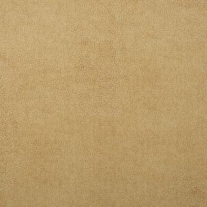 SPARTA-1 Kravet Fabric