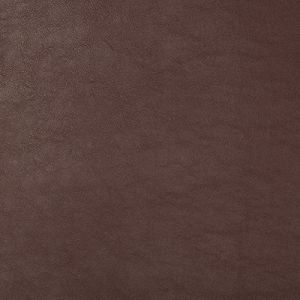 SWAPS-9 Kravet Fabric