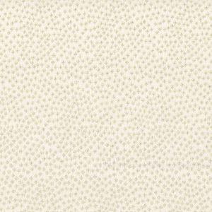 ACKNOWLEDGE 2 Bone Stout Fabric