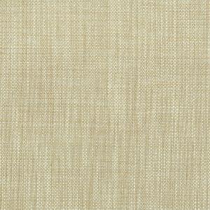 AMNESTY 4 Mica Stout Fabric