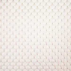 APOPKA 11 Eggshell Stout Fabric