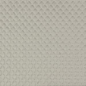 APOPKA 2 Twig Stout Fabric