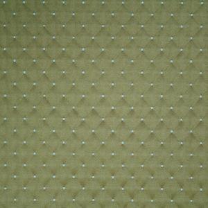 APOPKA 22 Olive Stout Fabric