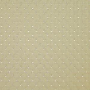 APOPKA 28 Pear Stout Fabric
