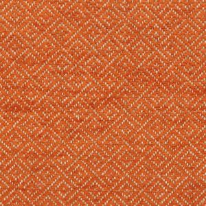 APPALOOSA 6 Melon Stout Fabric