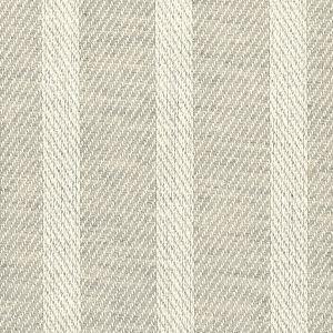 COUS-9 COUSIN 9 Silver Stout Fabric