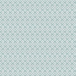 DULU-2 DULUTH 2 Aqua Stout Fabric