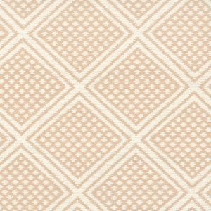 HOCKESSIN 2 Apricot Stout Fabric