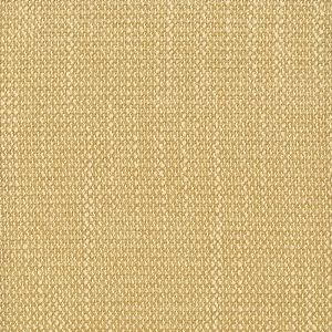 JUICY 19 Chardonnay Stout Fabric