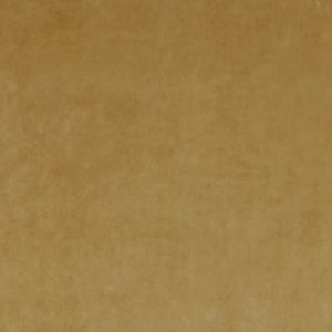LETINO 31 Honey Stout Fabric