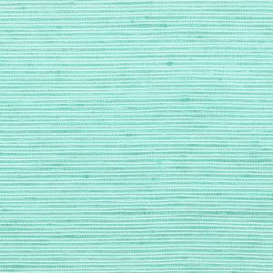 MANNING 5 Turquoise Stout Fabric