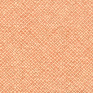 MILKYWAY 1 Apricot Stout Fabric