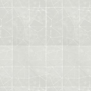 MITTEN 2 Silver Stout Fabric