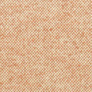 PAVAROTTI 1 Cider Stout Fabric