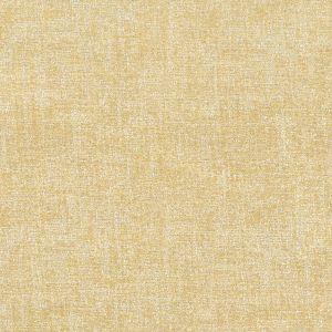 PROXIMITY 1 Straw Stout Fabric