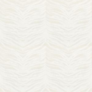 SKIN 4 Sandstone Stout Fabric