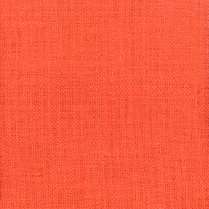 TICONDEROGA 38 Clay Stout Fabric