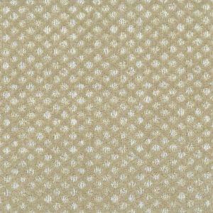 VETRANO 1 Linen Stout Fabric