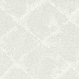 DONA-4 DONATE 4 Silver Stout Fabric