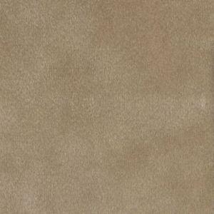 LETINO 16 Sandune Stout Fabric