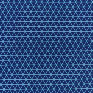 LCF68679F RETA DA PESCA Pool Ralph Lauren Fabric