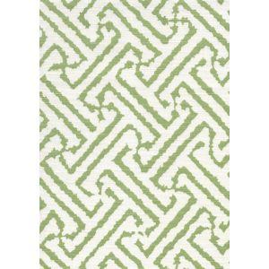 6620-01 JAVA GRANDE New Jungle on Tint Quadrille Fabric