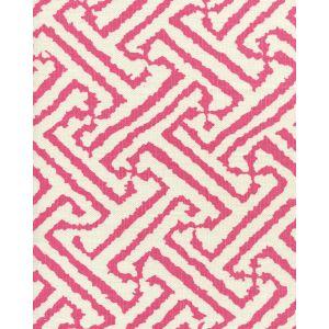 6620-12 JAVA GRANDE Watermelon on Tint Quadrille Fabric