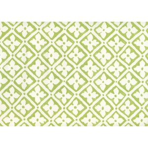 306330W-08 PUCCINI New Apple On Almost White Quadrille Wallpaper