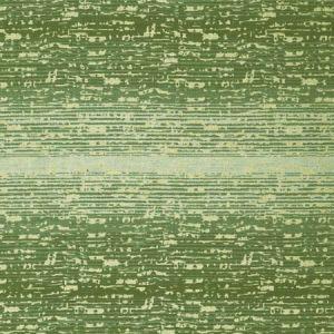 LCT1012-003 DAMIRCHIK Verde Claro Gaston Y Daniela Fabric
