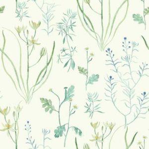 NR1566 Alpine Botanical York Wallpaper
