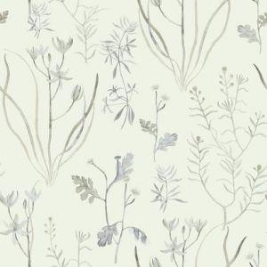 NR1567 Alpine Botanical York Wallpaper