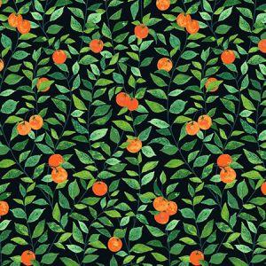 Nathan Turner Orange Crush Onyx Wallpaper