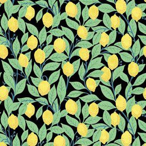 Nathan Turner Lemons Onyx Wallpaper