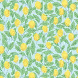 Nathan Turner Lemons Sky Wallpaper