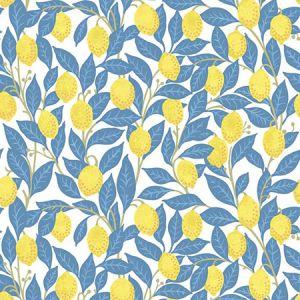 Nathan Turner Lemons Blue Wallpaper