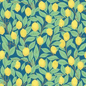 Nathan Turner Lemons Cadet Blue Wallpaper