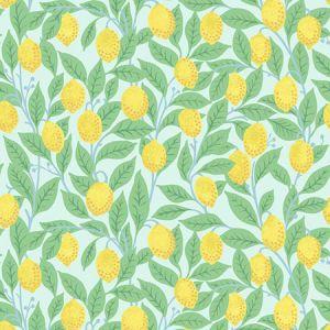 Nathan Turner Lemons Robin's Egg Wallpaper