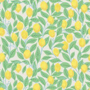 Nathan Turner Lemons Stone Wallpaper