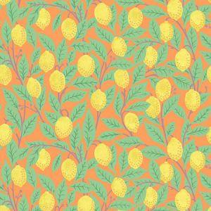 Nathan Turner Lemons Orange Wallpaper