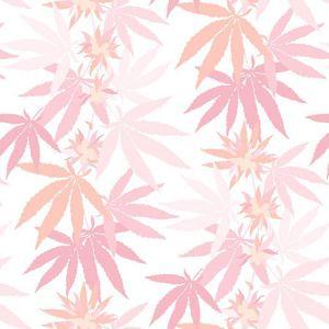Nathan Turner Girl's Best Friend Blush Wallpaper