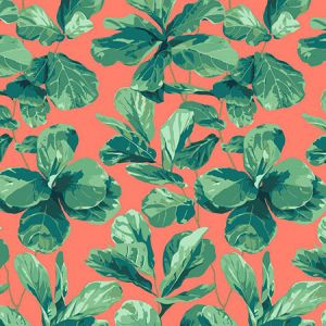 Nathan Turner Fiddle Fig Watermelon Wallpaper