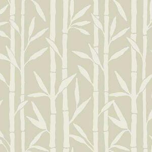 OG0605 Bamboo Grove York Wallpaper