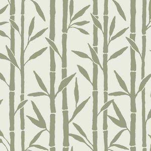 OG0608 Bamboo Grove York Wallpaper