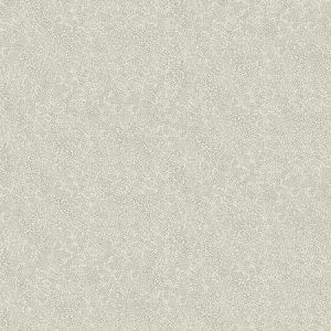 RI5116 Champagne Dots York Wallpaper