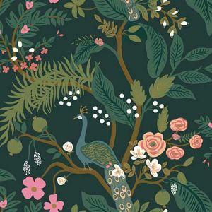 RI5168 Peacock York Wallpaper