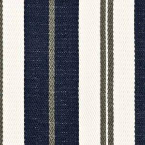 Rikerson 1 Indigo Stout Fabric