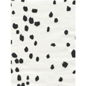 4050-06 RIO Black on White Quadrille Fabric