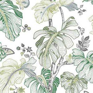 RMK11585RL Boho Palm York Wallpaper