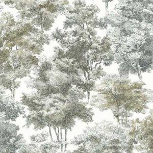 RMK11614WP Old World Trees York Wallpaper